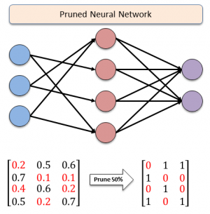 neural network diagram showing weights of pruned nodes in red