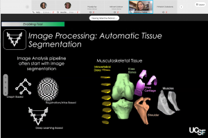 screen shot of presenter in video chat with a slide about image processing of automatic tissue segmentation